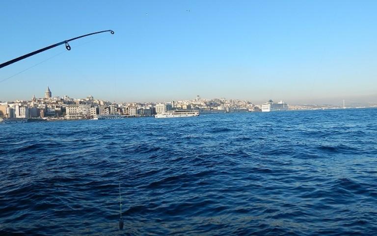 Что поесть в Стамбуле. Морепродукты. Часть 2